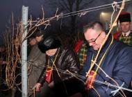 Uz popularnog Joleta, brojne delicije, vola na ražnju i kutjevačka vina Vincelovo slavili do jutra