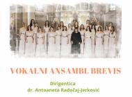Glazbena škola organizator koncerta Vokalnog ansambla Brevis
