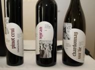 """Veleučilište u Požegi promoviralo novi vizualni identitet svojih vina s povijesnom  """"rudinskom glavom"""" na etiketi"""