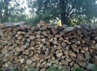 """Otkriven """"drvosječa"""" u tuđim šumama, a Požežanin predao manji arsenal oružja i municije"""