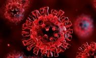 U posljednja 24 sata Hrvatska bilježi 544 nova slučaja zaraze korona virusom uz 12 preminulih osoba od Covid 19