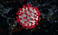Hrvatska danas bilježi 135 slučajeva zaraze korona virusom uz još aktivnih 1.158 oboljelih od Covid 19