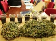 U pretrazi pronađena marihuana kod 43-godišnjaka iz Pleternice